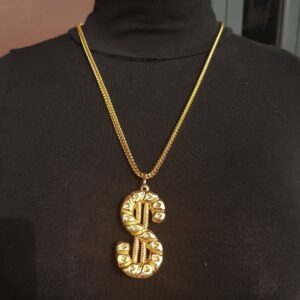 currency pendant and chain